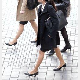安易な転職で全てパー/(C)日刊ゲンダイ