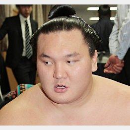 「金の扉がある」と白鵬/(C)日刊ゲンダイ