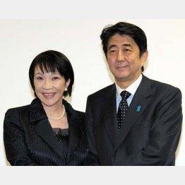 (C)日刊ゲンダイ/(C)日刊ゲンダイ
