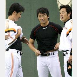 交流戦MVPの亀井(右)とスタメン落ち危機の長野(中)/(C)日刊ゲンダイ