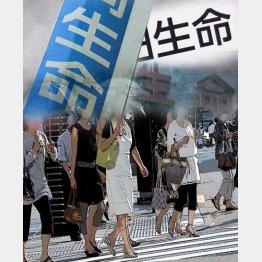不明点はどんどん相談すべし/(C)日刊ゲンダイ