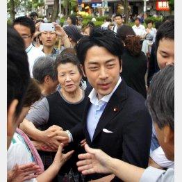 相変わらずの人気/(C)日刊ゲンダイ