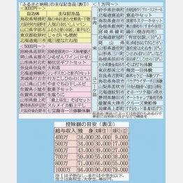 納税で地元に貢献/(C)日刊ゲンダイ