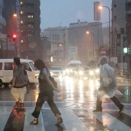 ここ数年豪雨が頻繁/(C)日刊ゲンダイ