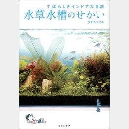 「すばらしきインドア大自然 水草水槽のせかい」(タナカカツキ著 リトルモア 1500円)