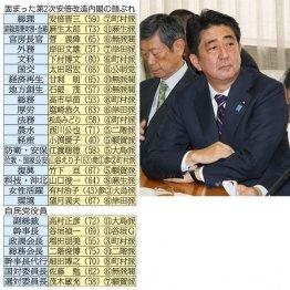 第2次安倍改造内閣と自民党役員の面々/(C)日刊ゲンダイ