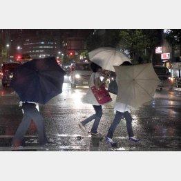 傘が役に立たない/(C)日刊ゲンダイ