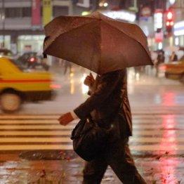 豪雨はこりごり/(C)日刊ゲンダイ