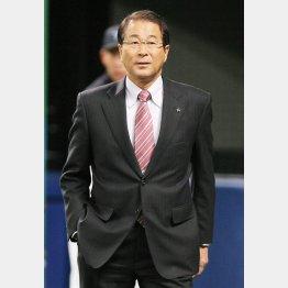 高田繁GM/(C)日刊ゲンダイ