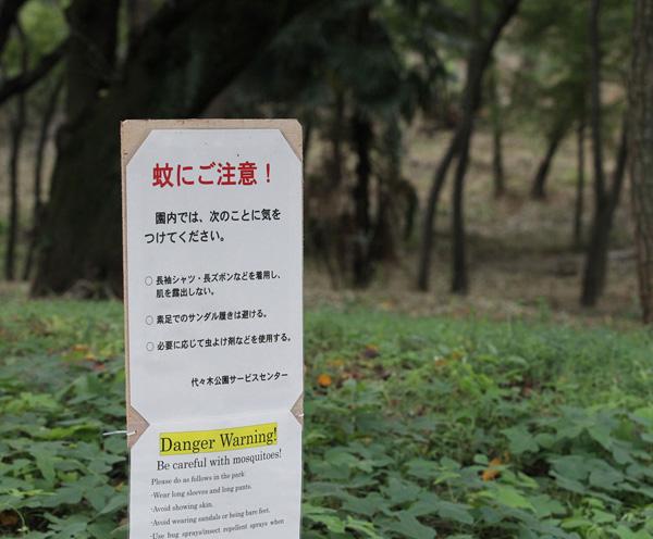 """デング熱の""""震源地""""になった代々木公園/(C)日刊ゲンダイ"""