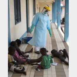 西アフリカでは恐怖が続く/(C)AP