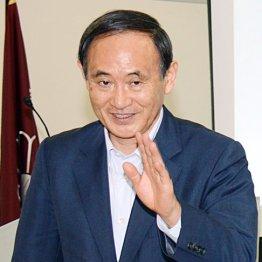 2世議員ばかりの中でのし上がった「武闘派」菅義偉官房長官