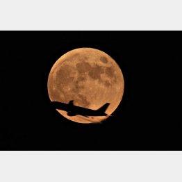 満月は引力が強い/(C)AP