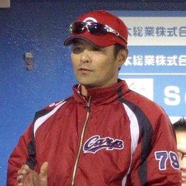 広島緒方新監督誕生 長嶋茂雄氏も振った28年の「カープ愛」
