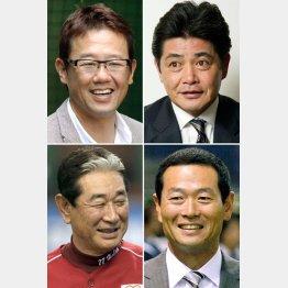 次期監督候補の面々/(C)日刊ゲンダイ