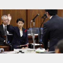 野党が厳しく追及/(C)日刊ゲンダイ