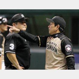 CS第5戦、審判に抗議する栗山監督/(C)日刊ゲンダイ