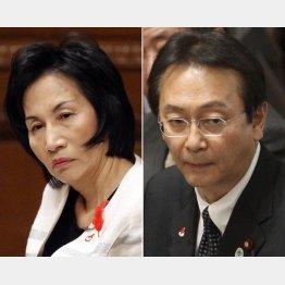 松島法相は辞任したが、江渡防衛相は…/(C)日刊ゲンダイ