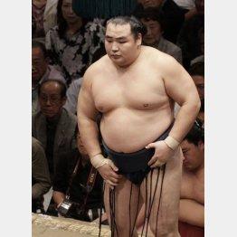 13日目は自滅で2敗目喫した鶴竜/(C)日刊ゲンダイ
