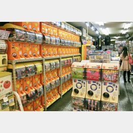 秋葉原の「ガチャポン会館」は日本最大規模/(C)日刊ゲンダイ