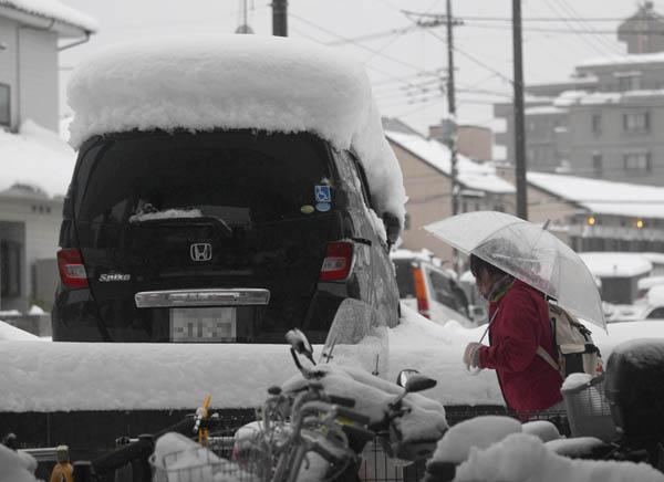 降雪量が減り…/(C)日刊ゲンダイ