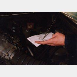 エンジンルームの作業はエンジンが冷えてから/(C)日刊ゲンダイ