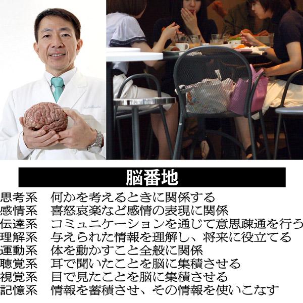 脳は8エリアに分かれている/(C)日刊ゲンダイ