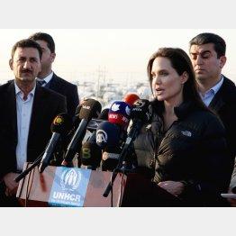 UNHCRの特使を務めるアンジー/(C)AP