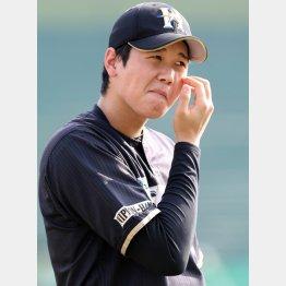 キャンプで狙われそうな大谷/(C)日刊ゲンダイ