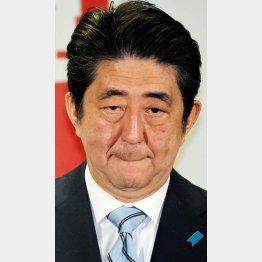 正気なのか/(C)日刊ゲンダイ