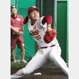 久米島では「安楽フィーバー」が起こっている/(C)日刊ゲンダイ