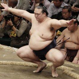 先の初場所日本人トップは稀勢の里/(C)日刊ゲンダイ