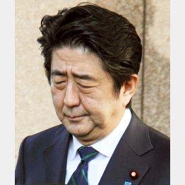 ぐったり/(C)日刊ゲンダイ