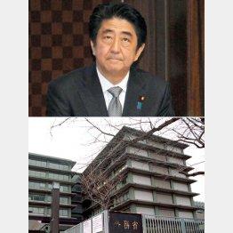 憲法22条を無視/(C)日刊ゲンダイ