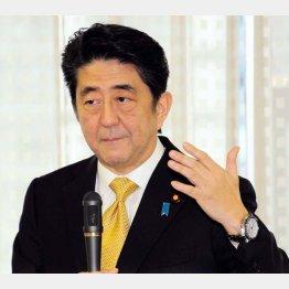 無策を露呈させた安倍外交/(C)日刊ゲンダイ