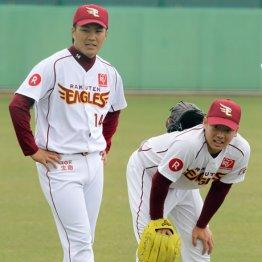 楽天 期待の松井裕樹が突然のリリーフ転向…正捕手・嶋の見解は?