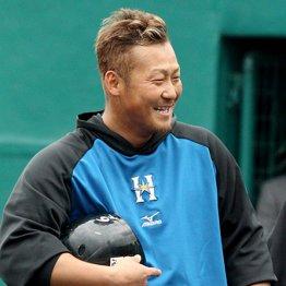 「ライバル?いないっしょ」日ハム中田が狙う本塁打王タイトル