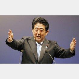 疑惑の一大コンツェルン(C)日刊ゲンダイ