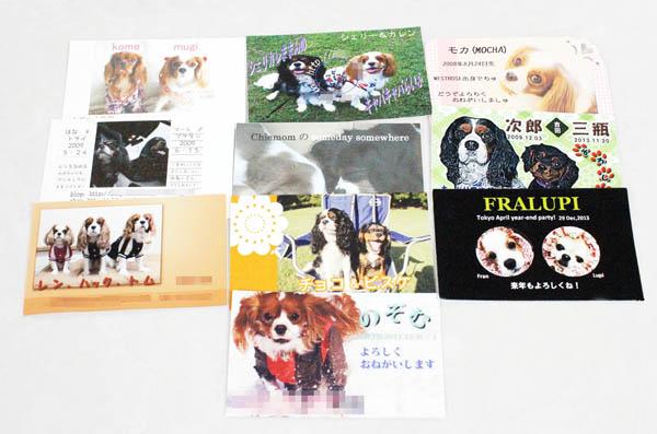 「2枚目名刺」には趣味や資格を書き込む(C)日刊ゲンダイ