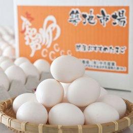 【築地市場 問屋おすすめたまご】築地ブランドの卵を作りました!