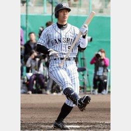11年ドラ1の伊藤は南信男社長の後輩(C)日刊ゲンダイ