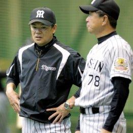 和田監督(左)と平田ヘッドコーチ(C)日刊ゲンダイ