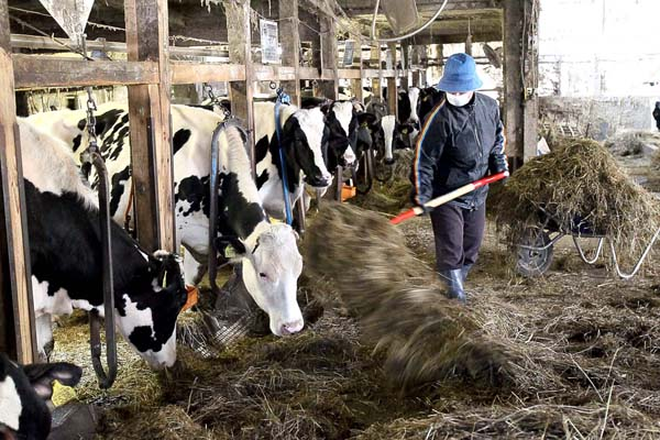 今年度は7100トンのバター不足(C)日刊ゲンダイ