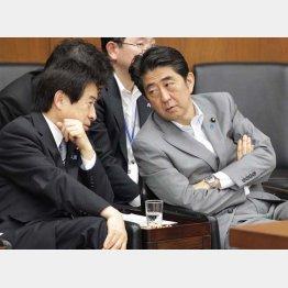 漏れた年金コンビの塩崎厚労相(左)と安倍首相(C)日刊ゲンダイ