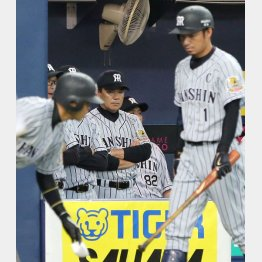 連日の大敗に険しい表情の阪神和田監督(C)日刊ゲンダイ