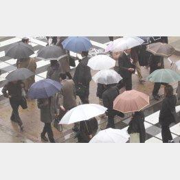 梅雨が続けば…(C)日刊ゲンダイ