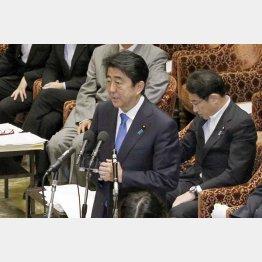 15日午前、衆院平和安全法制特別委員会で答弁する安倍首相(C)日刊ゲンダイ
