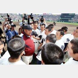 センバツはベスト4で姿を消した大阪桐蔭(C)日刊ゲンダイ