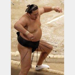 今場所は力なく負ける相撲が多い旭天鵬(C)日刊ゲンダイ