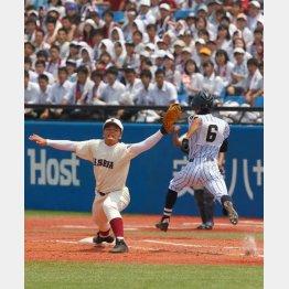 西東京大会決勝は過去最多の2万8000人が観戦(C)日刊ゲンダイ